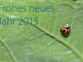 FrohesNeuesJahr2015